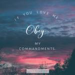 John 14:15